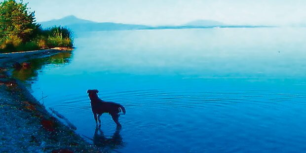 Jean-Luc Godards allererster 3D-Film