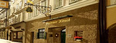 goldener-hirsch_text
