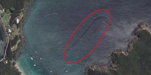 Riesiges Meeres-Ungeheuer entdeckt