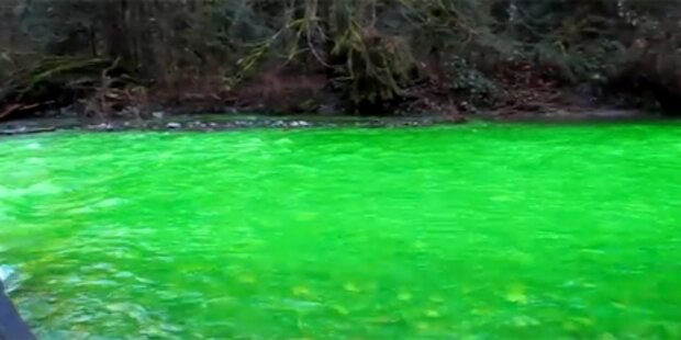 Kanadischer Fluss leuchtete neongrün