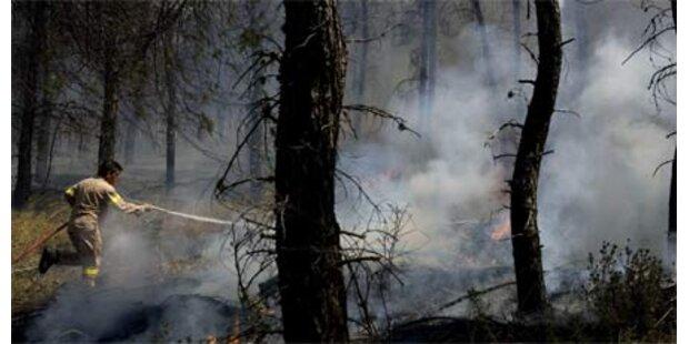 Großfeuer zerstört Touristenhochburg