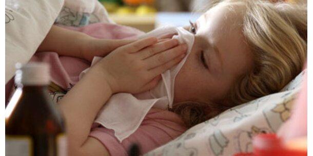 Google startet Grippe-Frühwarnsystem
