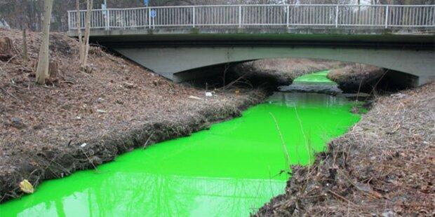 Rätsel um grün verfärbten Bach