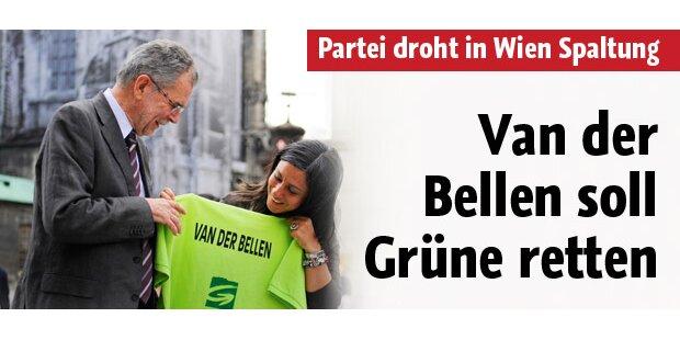 Van der Bellen kämpft für Rot-Grün
