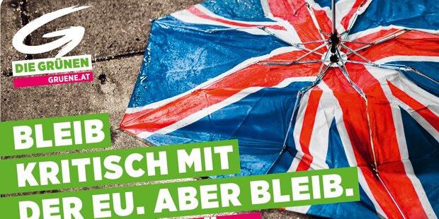 Grüne mit Pro-Europa-Plakaten