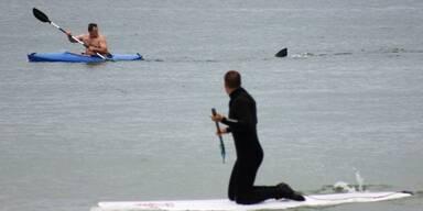 Hai löst Panik an US-Strand aus