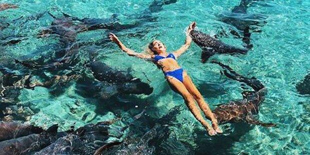 Schock-Verletzung: Instagram-Model von Hai gebissen