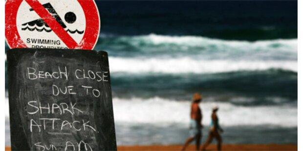 Wieder Killer-Angriff eines Haifischs auf Surfer