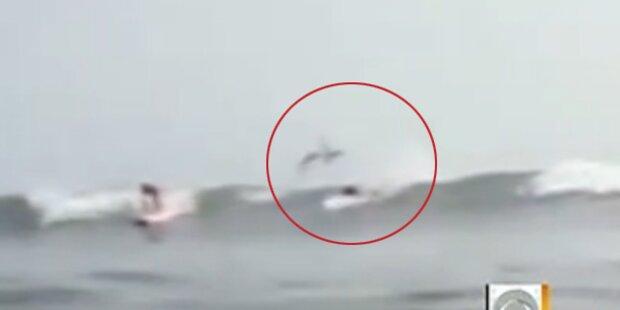 Hai macht Salto über verschreckten Surfer
