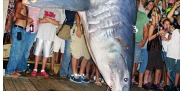 Angler fischen 383-kg-Hai in Florida