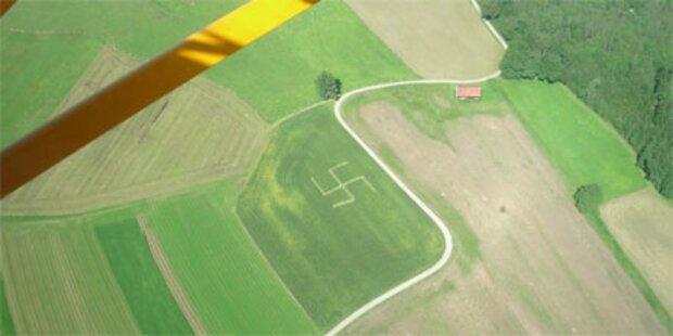 Mysteriöses Hakenkreuz im Maisfeld