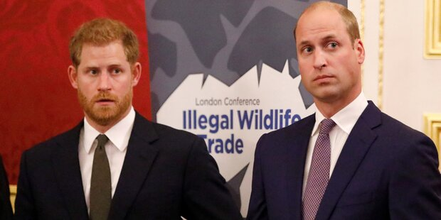 Harry und William im Bruderduell