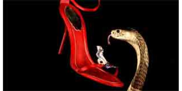 Kobra soll Luxus-Sandale bewachen