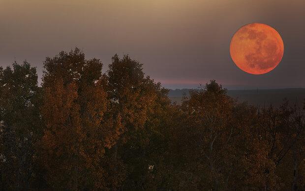 Harvest Moon: Das macht der Vollmond mit uns