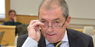 Heinz Schaden