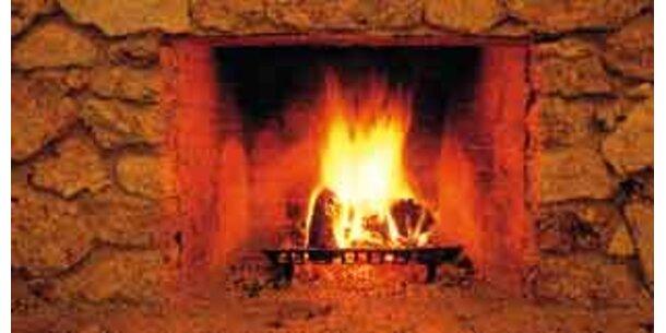 Brennholz- und Heizöl-Systeme am günstigsten