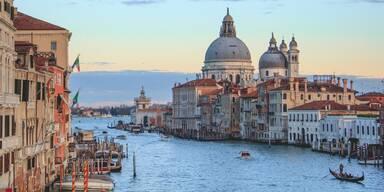 Venedig - Unsere Tiere