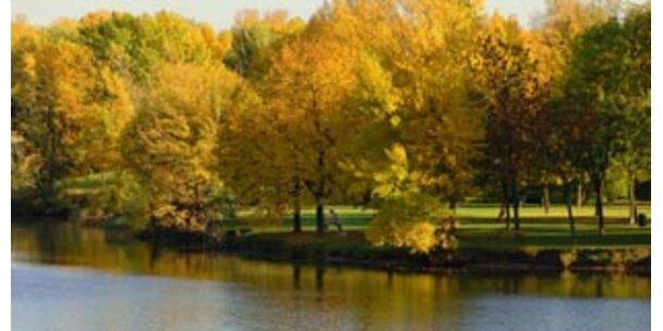 Herbstbeginn mit Sonnenschein