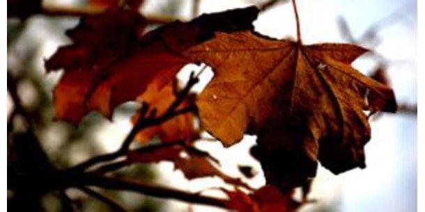 Der meteorologische Herbst begannam Montag