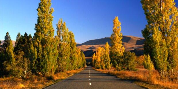 Hier zeigt sich der Herbst besondes schön
