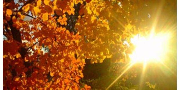 Goldenes Herbstwetter am Wahl-Wochenende