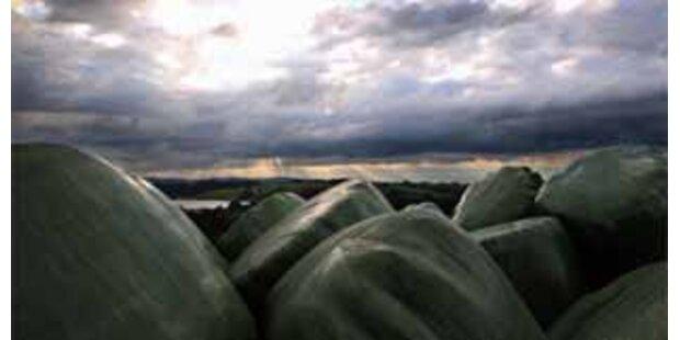 Landwirt von 1.500 kg Heuballen getroffen