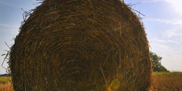 Heuballen tötet Landwirt in OÖ