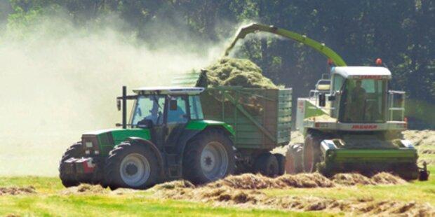 Bauern drohen wegen Dürre Ernteausfälle