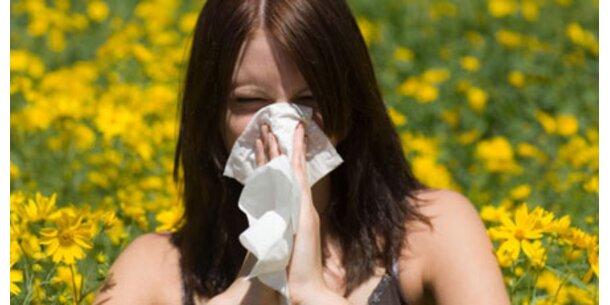 Allergien-Alarm im Urlaub