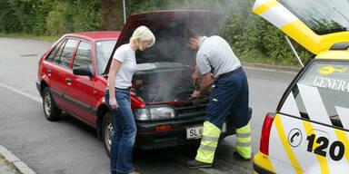 Expertentipps für Autofahrten bei Hitze