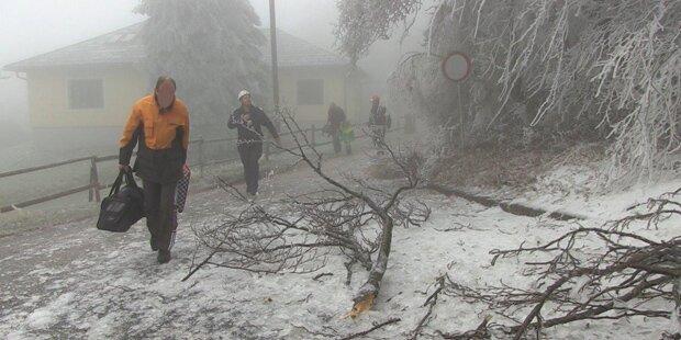 Hohe Wand wird schon wieder evakuiert