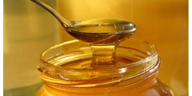 Honig als süßer Bakterienkiller