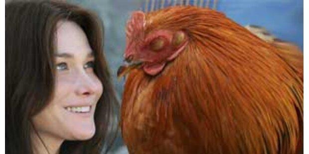 Frankreichs Premier freut sich über Huhn