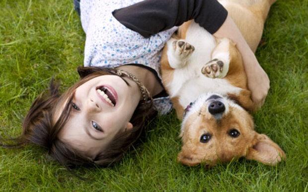 So schützen Hunde vor Asthma
