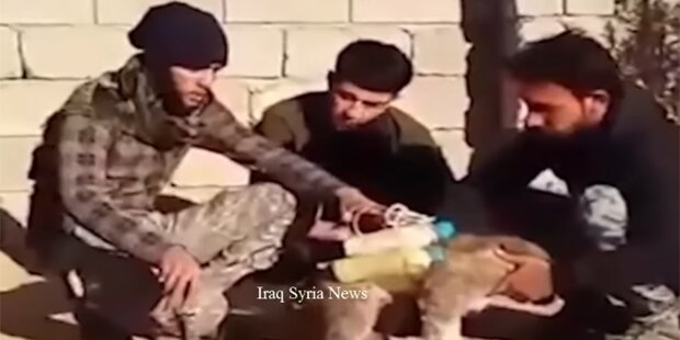 ISIS schnallt Welpen Bombengürtel um
