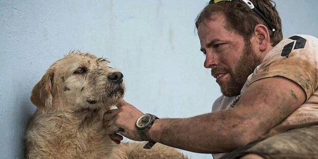 Hund folgte Sportlern bei Dschungel-Rennen