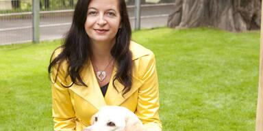Verschärfung des Tierhaltegesetz zum Schutz
