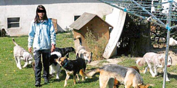 Polizei nimmt Frau 49 Tiere weg