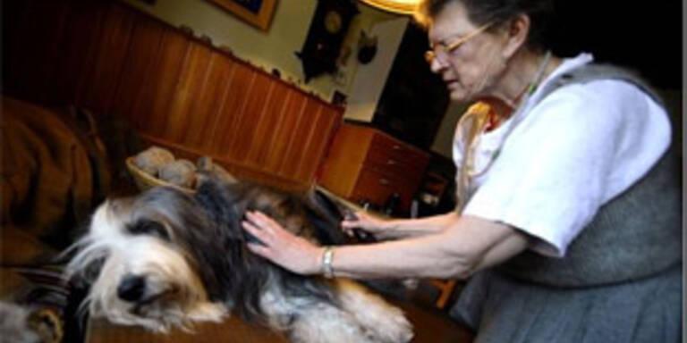 Salzburgerin spinnt Wolle aus Hundehaaren
