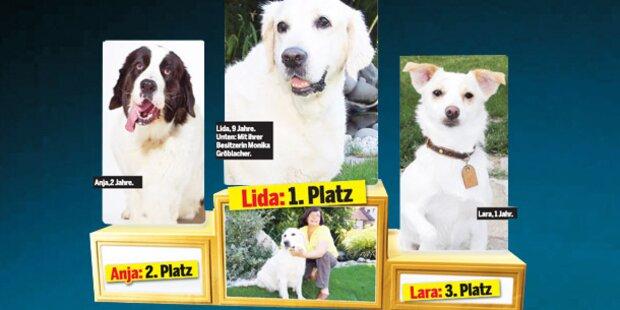 Lida ist der Hund des Jahres