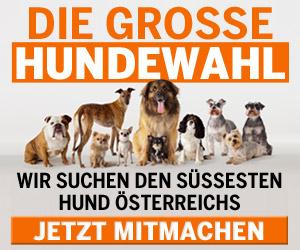 hundewahl_CAD.JPG