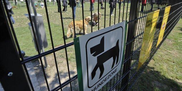 Polizei warnt vor Hunde-Killer