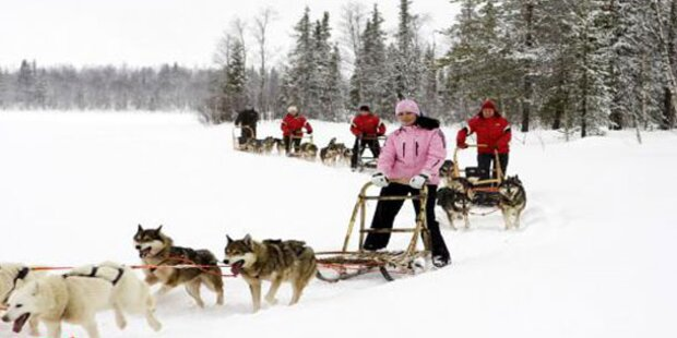 Finnland: Polarlichter und Huskytour
