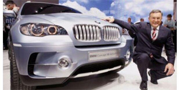 Grüne wollen Öko-Autos für Minister