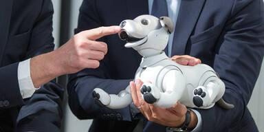 Sonys Roboterhund wohl bald in Europa