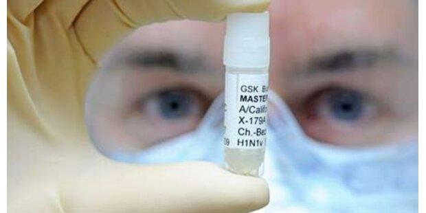 Schweinegrippe breitet sich weiter aus