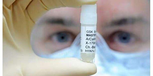 Schweinegrippe ist nicht zu stoppen