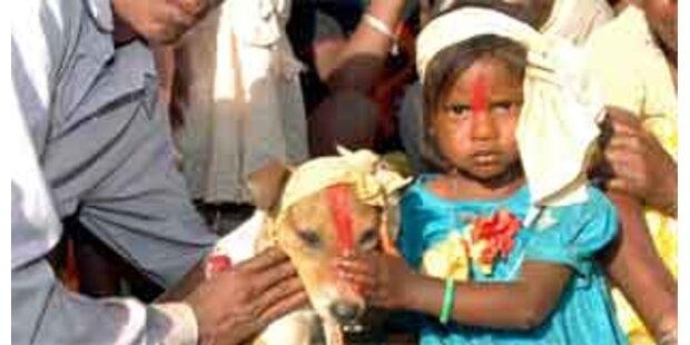 Siebenjährige Inderin heiratete Hund