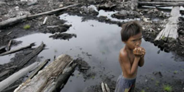 Heftiges Erdbeben erschüttert Indonesien