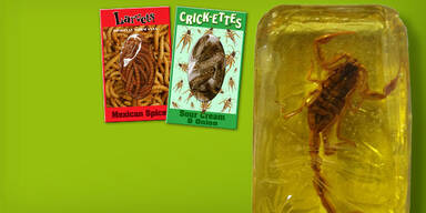 Insekten-Snacks